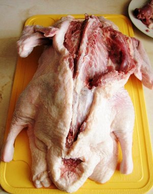 разрезаем кожу вдоль позвоночника утки