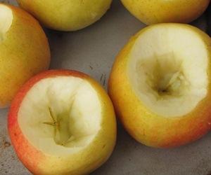 Моем яблоки и вырезаем из них серединку