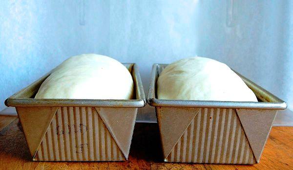 Что будет если дрожжевое тесто перестоит