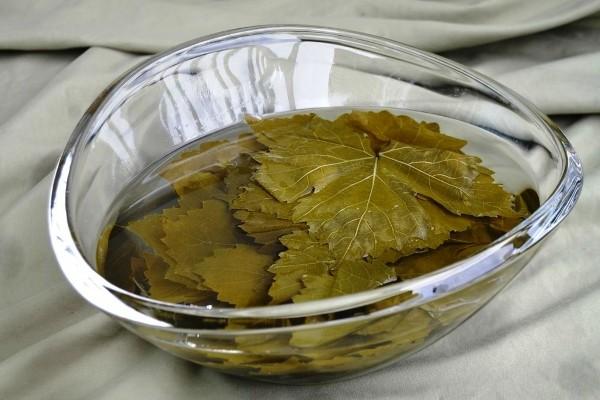 Листья винограда - широкие, большие